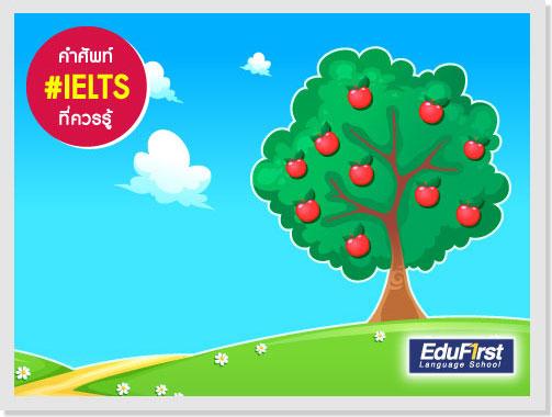 เรียน IELTS Vocabulary - Teeming  แปลว่า มีอยู่คับคั่ง, มีอยู่เต็ม, เต็มไปด้วย, อุดมสมบูรณ์ไปด้วย - ติว IELTS รับรองผล สถาบันสอนภาษาอังกฤษ EduFirst