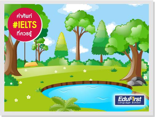 คำศัพท์ IELTS vocabulary BOG แปลว่า หนองน้ำ, บึง - เรียน IELTS รับรองผล โรงเรียนติวภาษาอังกฤษ EduFirst