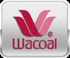 บริษัท วาโก้ Wacoal ส่งพนักงาน เรียนภาษาอังกฤษ กับเรา