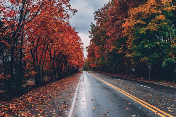 ฤดูต่างๆ ภาษาอังกฤษ (Season) คำศัพท์ ภูมิอากาศภาษาอังกฤษ - เรียนภาษาอังกฤษออนไลน์ สถาบันสอนภาษา EduFirst